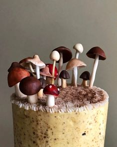 I honestly don't think I deserve my friends. just dropped off this pistachio cake with candy mushrooms toppers. How did I get so lucky? Pretty Cakes, Beautiful Cakes, Amazing Cakes, Mushroom Cake, Mushroom Cupcakes, Pistachio Cake, Fancy Cakes, Savoury Cake, Let Them Eat Cake