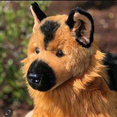 German Shepherd Plush made by Auswella®️#gsd #germanshepherds #germanshepherddog #germanshepherdpuppy #plush #plushies #stuffedanimal German Shepherd Plush, Age 3, Plushies, Corgi, Fox, Cute, Animals, Etsy, Handmade