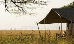 Explore East Africa is Africa's Premier Luxury Safari Company offering tailor-made safaris & beach holiday packages in East Africa Uganda, Beach Holiday, East Africa, Tanzania, Strand, Gazebo, Camping, Outdoor Structures, Tours
