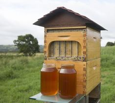 """REVOLUTIONARY BEEKEEPING BOX HARMONIZES MANKIND WITH BEES Meet """"Flow"""", a revolutionary beehive invention, which allows you to harvest honey without opening the hive at all, and absolute zero disturbance to the bees.""""This really is a revolution. You can see into the hive, see when the honey is ready and take it away in such a gentle way"""""""