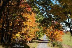 Thru the Mountains of West Virginia - By LauraNelle PolandMallett Ebhs