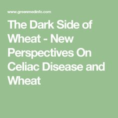 The Dark Side of Wheat - New Perspectives On Celiac Disease and Wheat
