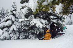 Με τον ΦΟΠ στα βουνα: ΜΙΚΡΗ ΖΗΡΙΑ 18-12-2010 #outdoorsgr Snow, Activities, Outdoor, Outdoors, Outdoor Games, The Great Outdoors, Eyes, Let It Snow