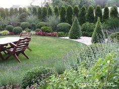 Ogród mały, ale pojemny;) - strona 126 - Forum ogrodnicze - Ogrodowisko