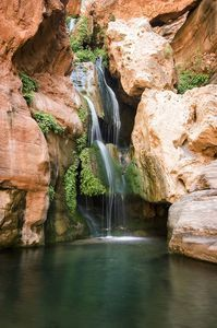 This braided path next to the Colorado River ends at beautiful and enchanting Elves Chasm waterfall. Near Grand Canyon Village, Arizona.