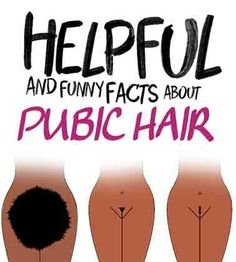 Do you really know the best practices when it comes to maintaining pubic hair and more importantly what it's there for? Allow us to enlighten you.