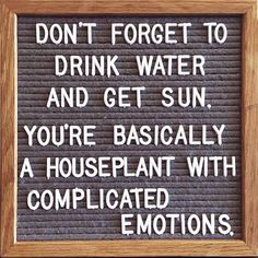Funny Quotes : QUOTATION – Image : Quotes Of the day – Life Quote A houseplant with complicated emotions. Sharing is Caring Motivacional Quotes, Great Quotes, Quotes To Live By, Funny Quotes, Funny Inspirational Quotes, Motivational, The Words, Messages, Positive Quotes