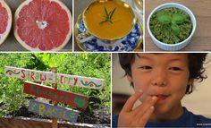 Awesome idea!    Una propuesta sobre cómo motivar a los niños a comer saludable, probar cosas nuevas, cocinar y hasta divertirse en la mesa :)