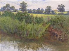 William Savage Cooper, Study of a summer riverbank