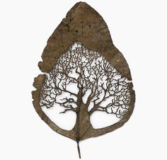 Sculpture - Tree within a leaf. Amazing :) Spanish artist Lorenzo Duran carves intricate artworks out of leaves. He meticulously cleans, dries, and then cuts away leaf segments to reveal beautiful images and patterns. Drawn Art, Art Carved, Spanish Artists, Wow Art, Art And Illustration, Gravure, Art Plastique, Oeuvre D'art, Oeuvres