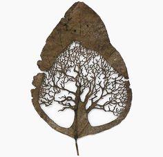 Artes con hojas de plantas naturales por Lorenzo Durán