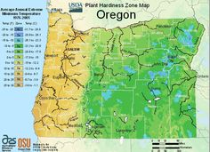 Oregon Planting Zone Map Small