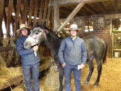 My horse bought at Waverly, Iowa