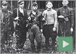 Bug Out Skills: Jewish Partisans of WWII: Words and lessons from those that have had to bug out for real and did is incredibly successfully in the face of fates worse than death without a ton of fancy gear. #jewishpartisans #bugout
