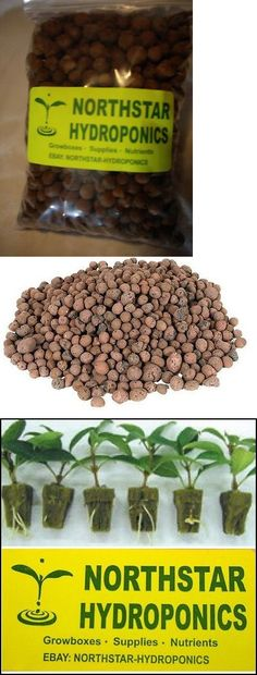 4 Liters Hydro Clay Pebbles Hydroponic Expanded Rocks Expedited Shipping