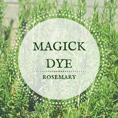 MAGICK DYE / rosemary