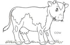 coloring pictures of cows | cow farm coloring pages duck farm coloring pages feed chickens farm ...