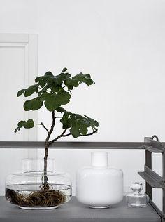 CSA+Marimekko I feel like hoarding these vases right now