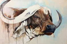 Cape buffalo, WIP, oil on cradled panel, 24 x 36 inches. More work on this guy.