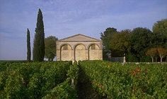 Vineyards at Chateau Mouton-Rothschild, Bordeaux, France