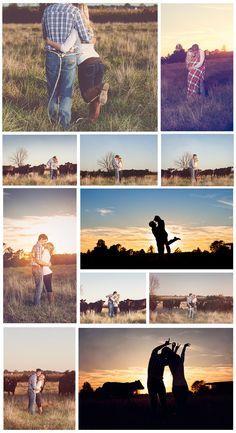 Farm engagement photos, cows- Memories Captured by Brenda