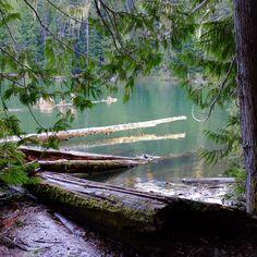 There were probably fish there. But I didn't catch 'em. . . . #explorebc #ilovebc #explorecanada #canada150 #canada #garibaldi #bcparks #camping #fishing #summerdays #summer #outdoors #pnwlife #pnw #weatcoast #yvr #whistler #bc #travel #instatravel