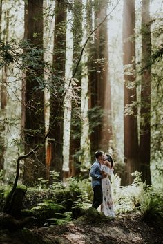 Meaningful and joyful Mendocino engagement photos. This destination engagement session was photographed in gorgeous redwood groves and beautiful Mendocino. Engagement Photo Shoot Poses, Forest Engagement Photos, Funny Engagement Photos, Country Engagement Pictures, Outdoor Engagement Photos, Engagement Shots, Engagement Photo Outfits, Engagement Photo Inspiration, Engagement Couple