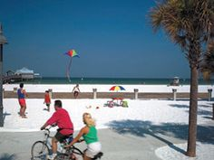 The Clearwater Beach Bus by Gray Line Orlando Tours lets you enjoy a day of full of swimming, water activities or just simple relaxation Clearwater Beach Florida, Tour Tickets, Water Activities, Photo Library, Orlando, Backdrops, Dolores Park, The Neighbourhood, Street View