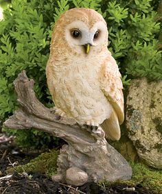 This Owl on Stump Statue is perfect! #zulilyfinds