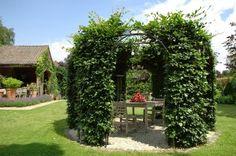 Harmonious Gardens!por Depósito Santa Mariah