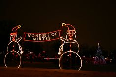 Wonders of Winter - Festival of Lights Winter Light Festival, Festival Lights, Waterloo Ontario, Things To Do, Favorite Things, Neon Signs, Christmas, Things To Make, Xmas