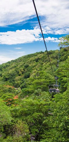 Jamaica | Take an aerial tour above the Jamaican forests and witness everything that this naturally beautiful terrain has to offer firsthand.