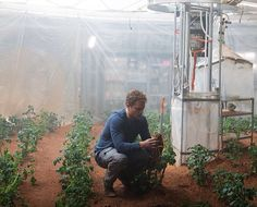 Matt Damon declared that he is the greatest botanist in Mars and botanists on Earth agree. A newly discovered bush tomato species found in Northern Australia has been named after his character, Mark Watney. Cinema Popcorn, Space Fantasy, Space Pirate, Mini Farm, Here On Earth, Matt Damon, Cinema Posters, Book Tv, The Martian