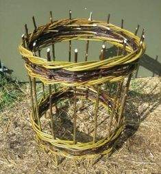 Cylindrical plant support in willow