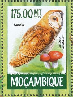 Western Barn Owl stamps - mainly images - gallery format
