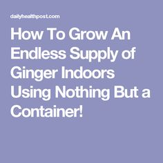 How To Grow An Endless Supply of Ginger Indoors Using Nothing But a Container!