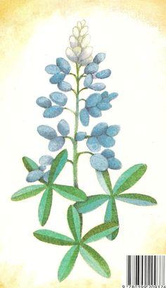 #floral #tattooinspiration #bluebonnets