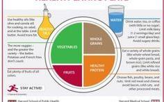 Healthy Eating Plate: da Harvard ci insegnano come mangiare sano
