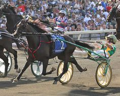 Market Share - double millionaire & 2012 Hambletonian winner headlines the world's top trotters in the Breeders Crown Open Trot on Saturday, October 19th at Pocono Downs