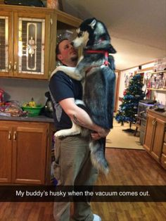 Attack Of The Funny Animals - 26 Pics