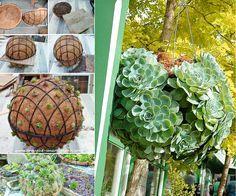 DIY Hanging Succulent Ball for your garden, wonderful ! (y) Instructions --> http://wonderfuldiy.com/wonderful-diy-garden-succulent-ball/