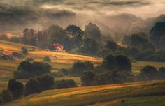 summer morning by alexandru popovschi