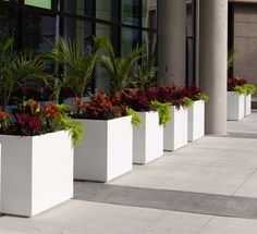 10 Architectural Planters | Contemporary Concrete Planters and Sculpture by Adam Christopher