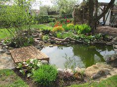Outdoor Fish Ponds, Ponds Backyard, Garden Design Plans, Backyard Garden Design, Fish Pond Gardens, Bog Plants, Diy Pond, Natural Pond, Pond Landscaping