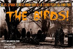 "Cemeteries can be ""spooky"", but for birds and other wildlife their potential to provide viable, healthy habitat is immense. Often dominated by large seed or fruit-producing trees and shrubs makes these community spaces a potential refuge for animals.  Consider finding a cemetery in your community and adding to the Habitat Network Map--www.habitat.network."