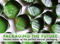 packaging the future, green packaging, natural packaging, sustainable design, green design, banana leave packaging, eating with banana leave... #eco