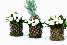 Pineapple Decor 9