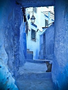 Cat In Blue Chefchaouen Morocco. Blue City, Moroccan Style, Moroccan Blue, Blue Aesthetic, Something Blue, North Africa, Marrakech, The Places Youll Go, My Favorite Color