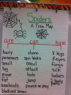 Spider unit graphic organizer-- Would be great if they could actually spell the word poisonous. Geez. These people are teaching first grade? No wonder...
