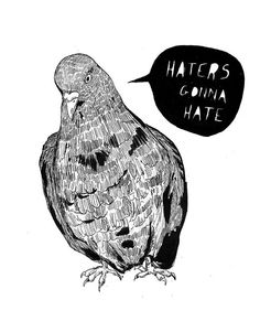 A4 'Haters Gonna Hate' Pigeon Print by IsobelKho on Etsy